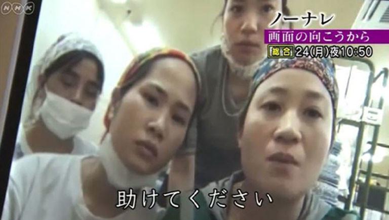 NHK『ノーナレ』公式ホームページ